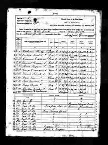 Civil War Veterans' Schedule - NY